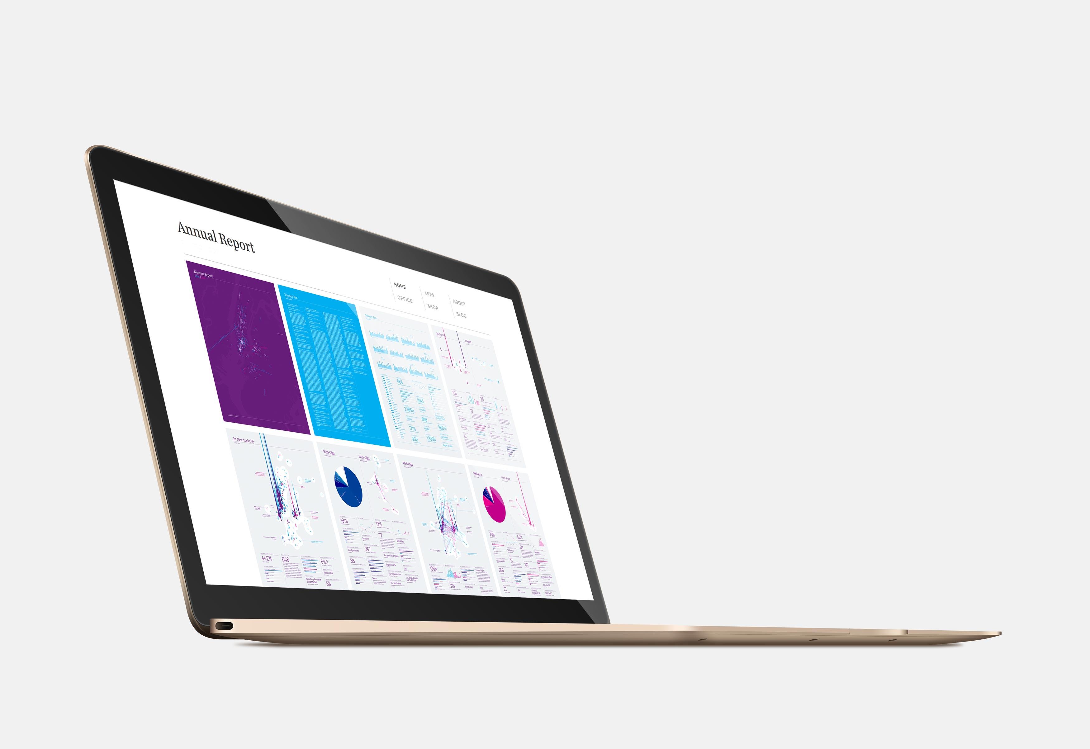 Online Report versus Corporate Website
