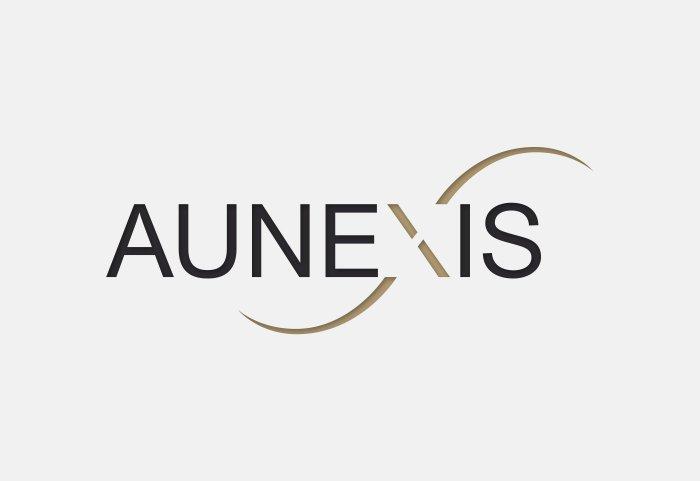 Aunexis Corporate Design