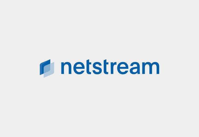 Netstream Branding Logo